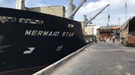 Tàu MV MERMAID STAR vận chuyển 4.220 tấn S.A (Capro) cập Cảng Quy Nhơn ngày 26/06/2018.