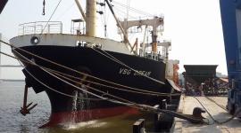 Tàu VSG DREAM  vận chuyển 6.300 tấn NPK KOREA - NAMHAE HÀN QUỐC dự kiến cập Cảng Quy Nhơn ngày 21/01/2019.