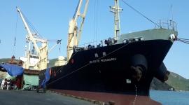 TÀU MV MAJESTIC PESCADORES VẬN CHUYỂN 3000 TẤN NPK KOREA ĐÃ CẬP CẢNG QUY NHƠN VÀ MỘT SỐ HÌNH ẢNH