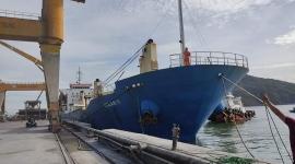 TÀU MV OCEAN 19 VẬN CHUYỂN HƠN 6.600 TẤN SA NHẬT BẢN TP+ (CAPRO GRADE) CẬP CẢNG QUY NHƠN NGÀY 05.08.2020
