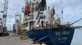 TÀU MV DMC VENUS V.04 VẬN CHUYỂN HƠN 6.000 TẤN SA NHẬT BẢN TP+ (CAPRO GRADE)